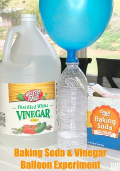 Self Inflating Balloon: Baking Soda and Vinegar Balloon Experiment