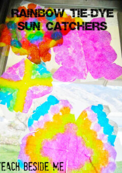 Rainbow Tie-Dye Suncatchers Craft