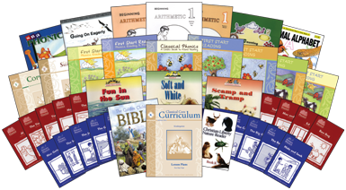 Curriculum Choices 2012-2013