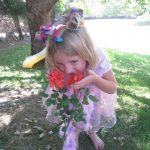 Simple Fairy Crown Craft
