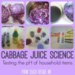 Cabbage Juice Science Experiment