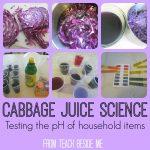 Cabbage Juice Science Experiment