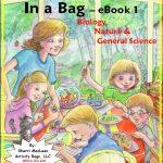 Activity Bags Swap