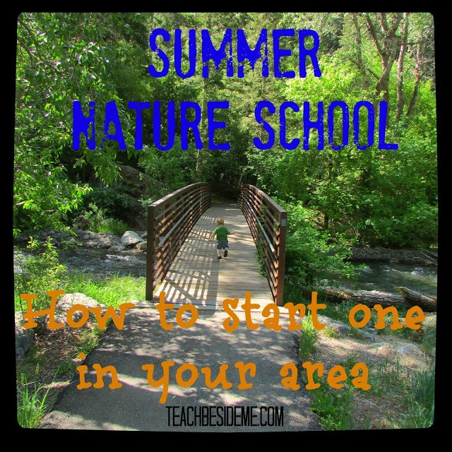 Starting a Summer Nature School