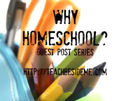Why Homeschool Guest Post- Misty
