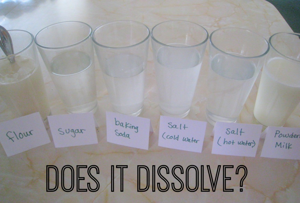 Dissolving Science Experiment- What Dissolves in Water?