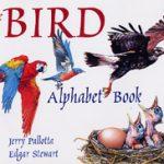 Storybook Art- Bird Alphabet Book & Craft
