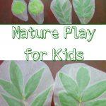 Nature Hunt~ Leaf Matching Game