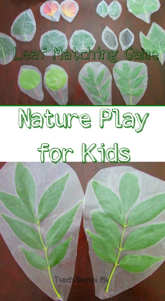 Make a Leaf Matching Game out of real leaves- great Nature study and play for kids!