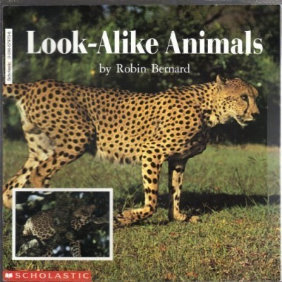 look alike animals book