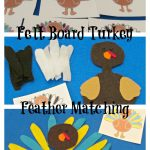 Turkey Felt Board Feather Matching