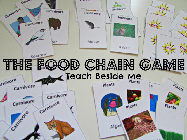 food chaing game