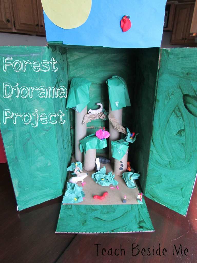 Kids Diorama With Details: F Is For Forest Diorama (Geography Projects From A To Z