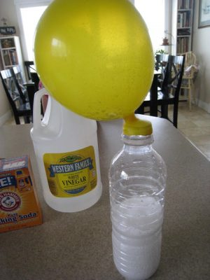 Simple Science Experiments For Kids Teach Beside Me