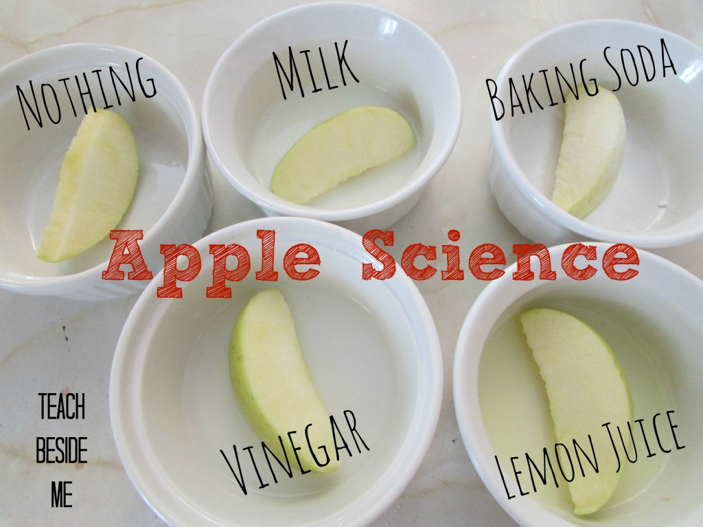apple science for preschool at home
