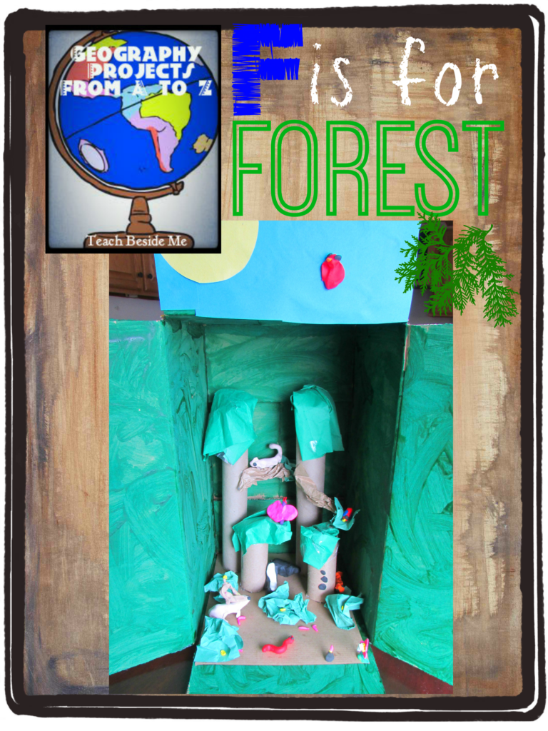 F is for forest diorama- Geography Projects from A to Z
