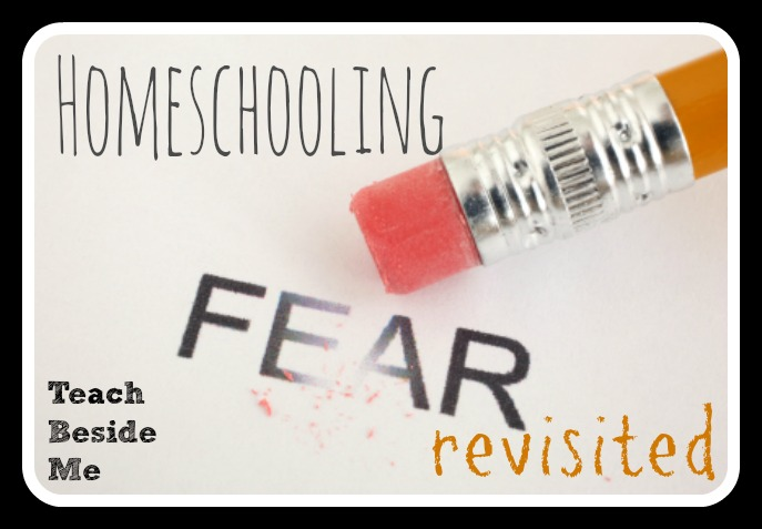 Homeschooling Fear Revisited from Teach Beside Me