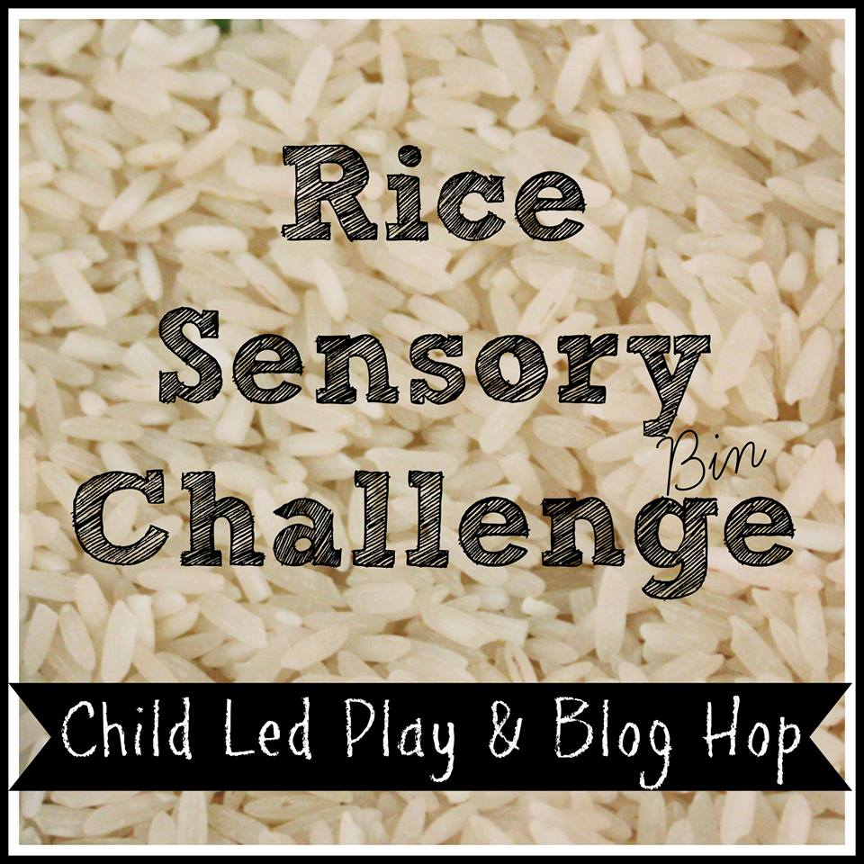 Open Ended Rice Sensory Bin Play