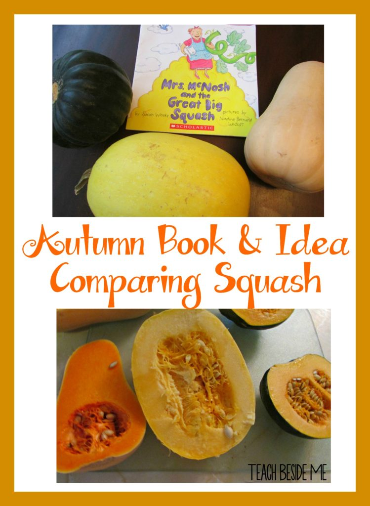 Autumn Book and Idea- Comparing Squash
