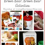 Montessori-Inspired-Brown-Bear-Brown-Bear-Activities