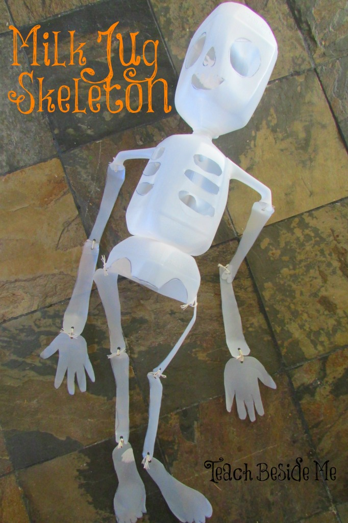 Skeleton Learning Activity
