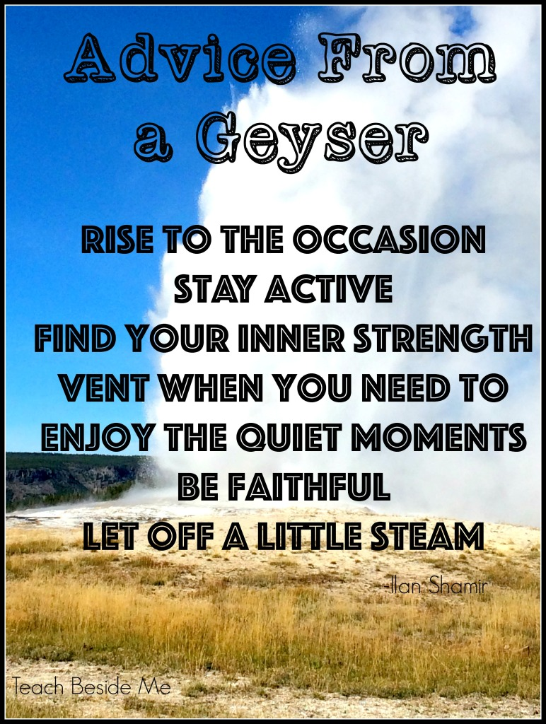 Advice from a Geyser 2