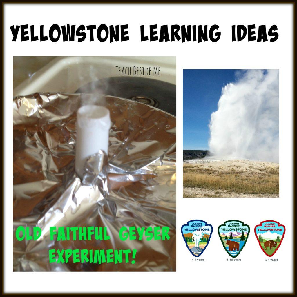 Yellowstone learning ideas