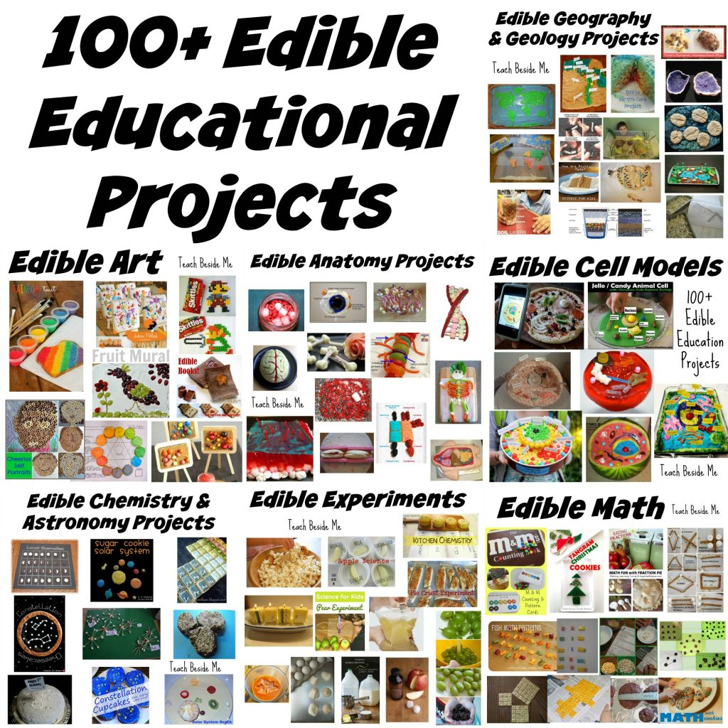 100 Edible Education Projects Teach Beside Me Simple Animal Cell Parts Diagram With Labels For Kids