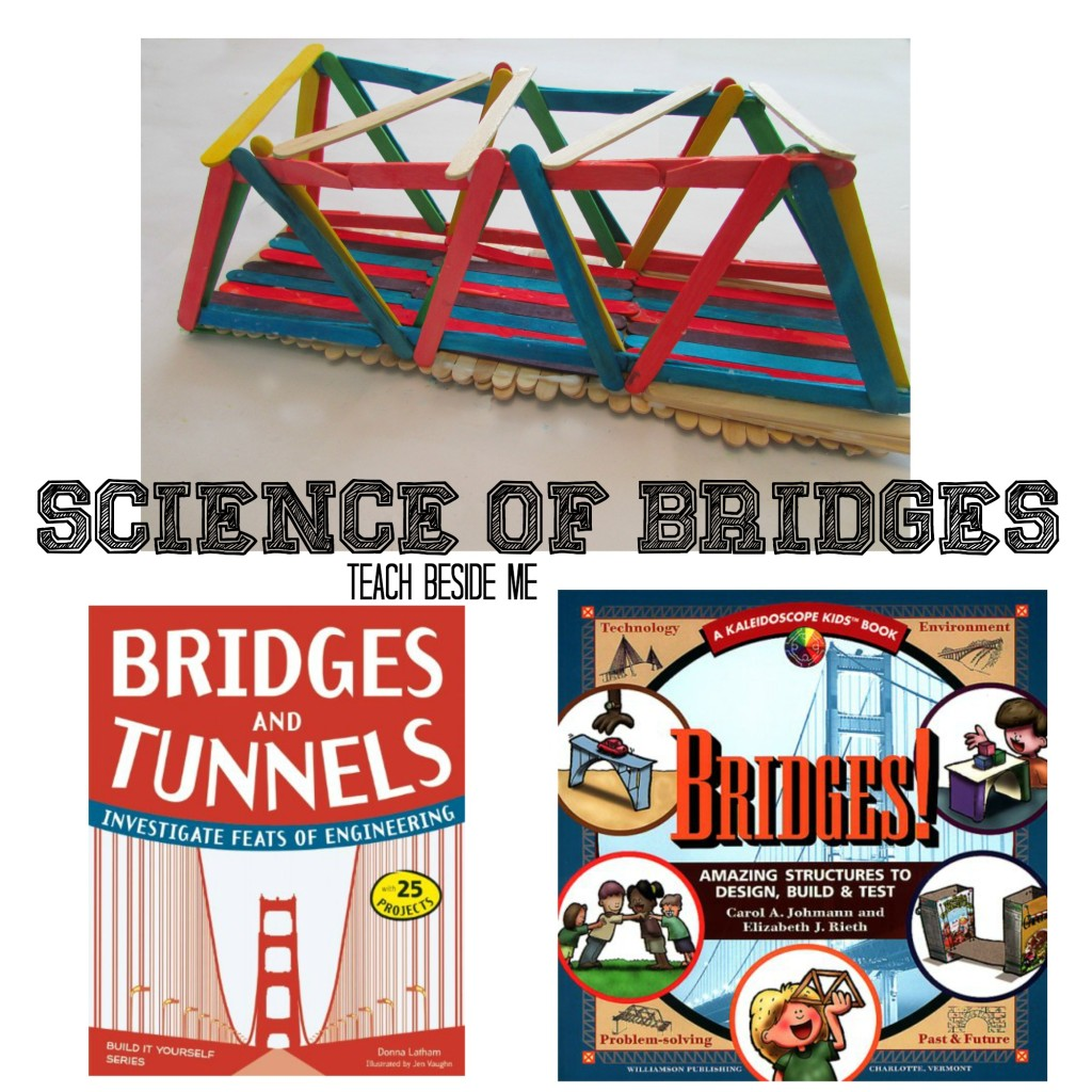 Science of Bridges from Teach Beside Me
