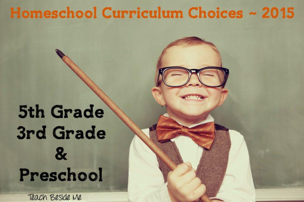 Homeschool Curriculum Choices 2015 from Teach Beside Me