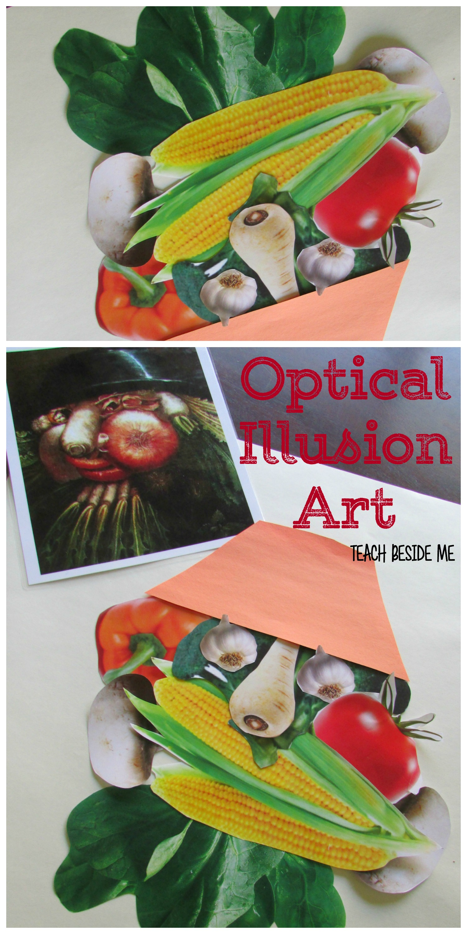 arcimboldo Optical Illusion Art Project