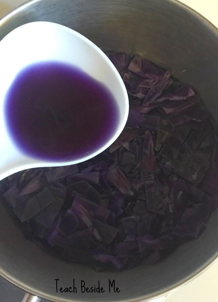 cabbage juice experiment