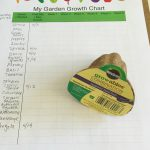 Garden Growth Chart