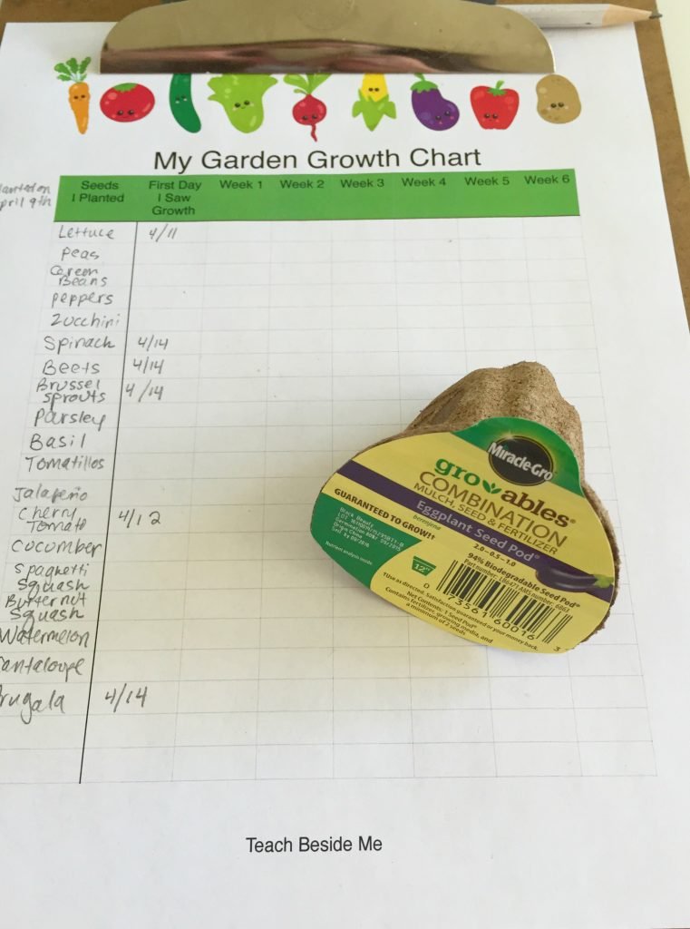 Garden Growth Chart- Teach Beside Me