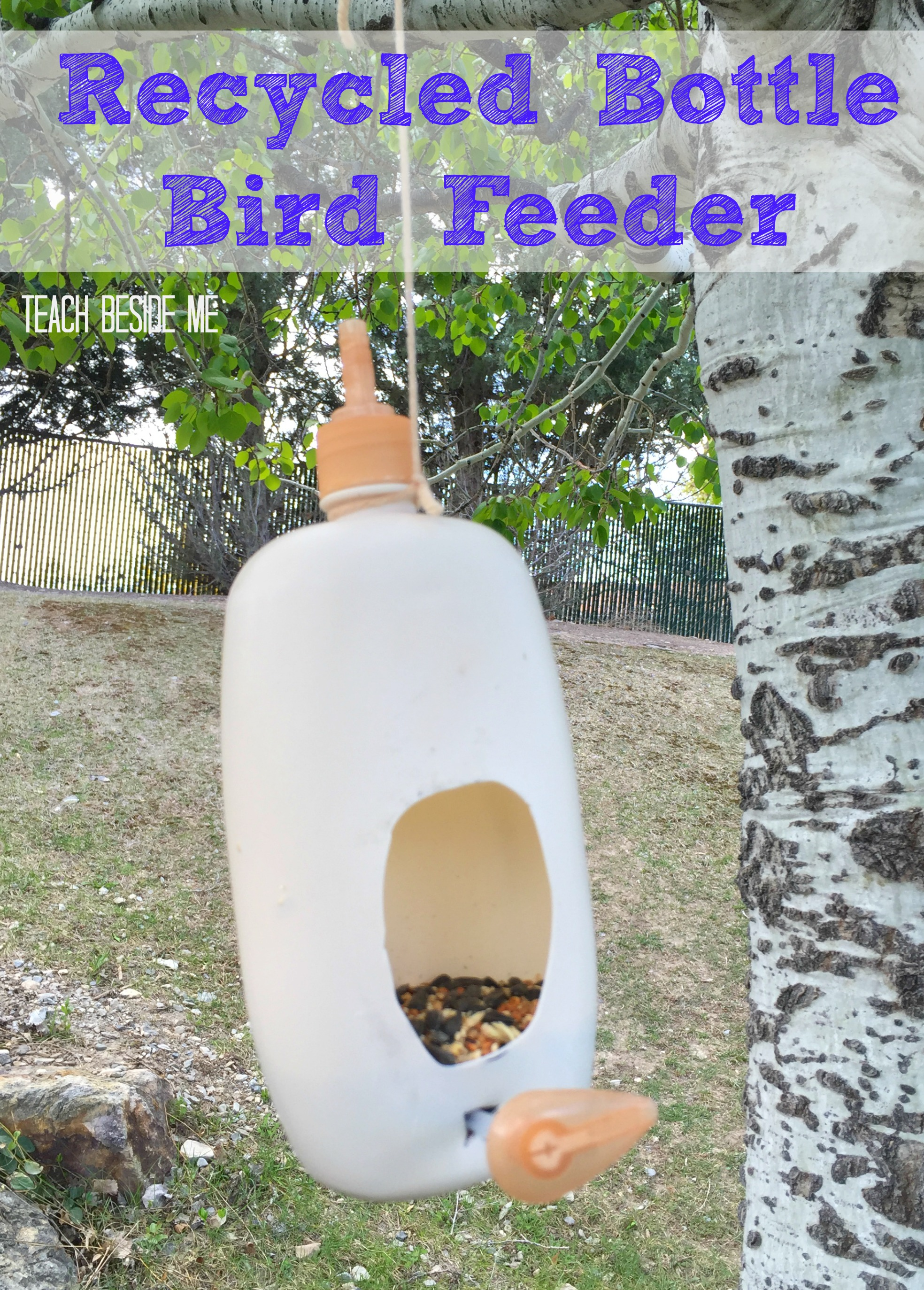 Recycled Bottle Bird Feeder & Two Ingredient Play Dough
