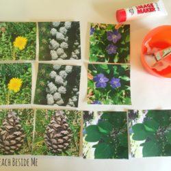 Fabric Printed Nature Matching Game