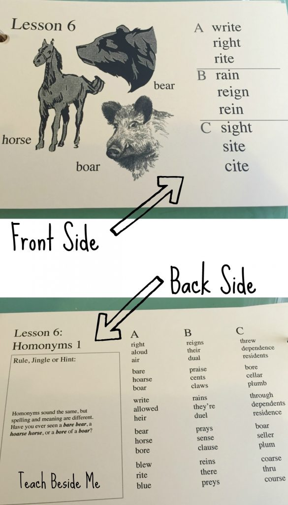 Phonetic Zoo Spelling Cards Front and back