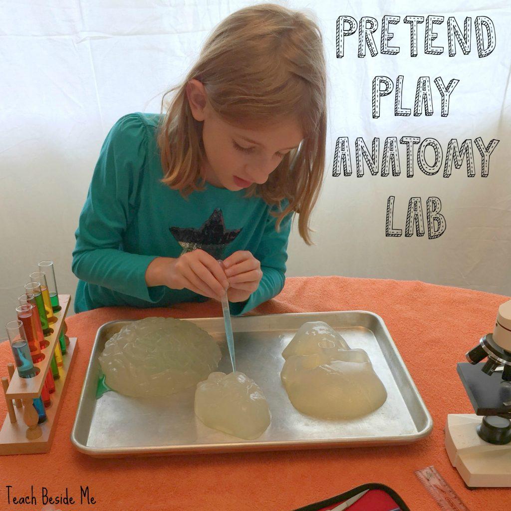 gelatin anatomy experiment