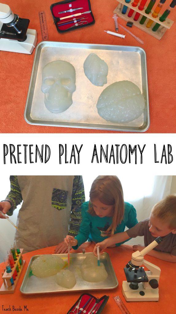 Pretend play anatomy lab