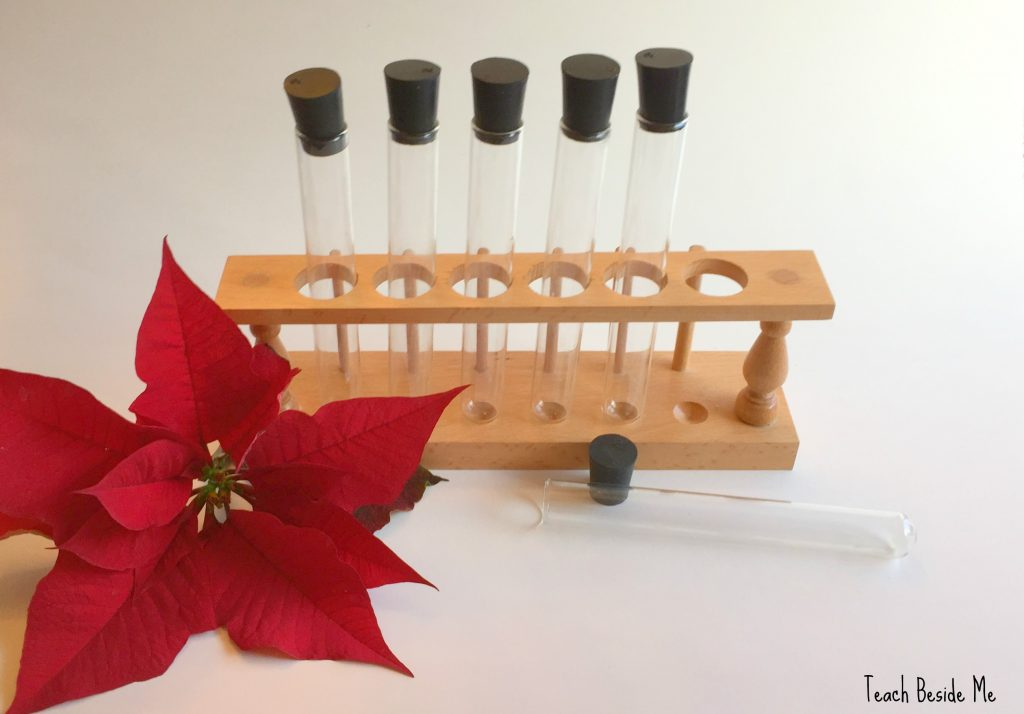 Poinsettia pH - Christmas Chemistry
