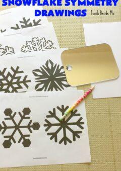 Snowflake Symmetry Drawings