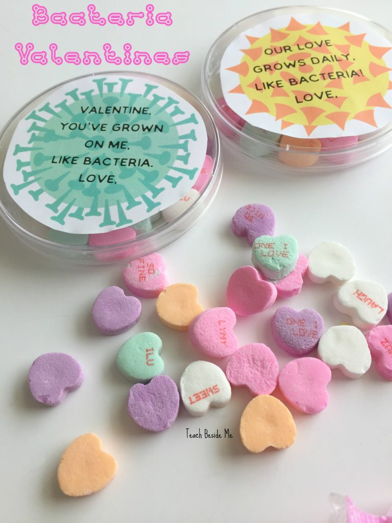bacteria science valentines