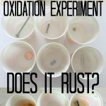 Oxidation Experiment: Does It Rust?
