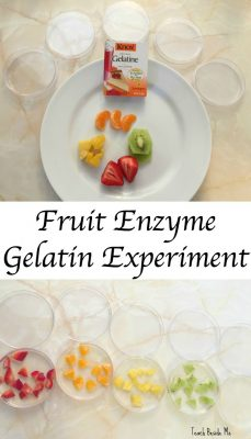 Kitchen science experiments for kids teach beside me more cool kitchen science experiments forumfinder Images