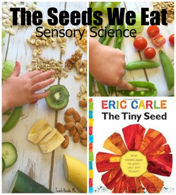 Sensory Science- Seeds We Eat
