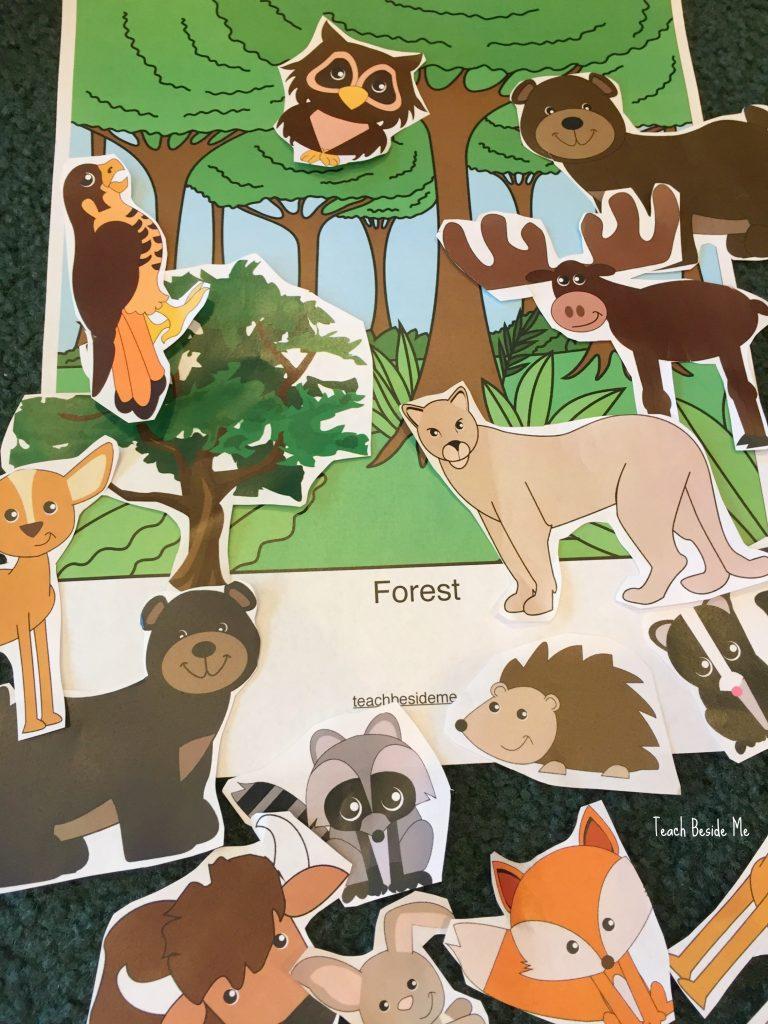 forest habitat sorting mat