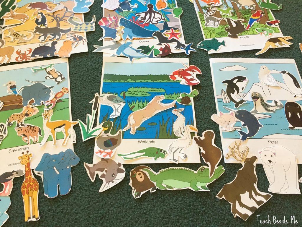learning animal habitats