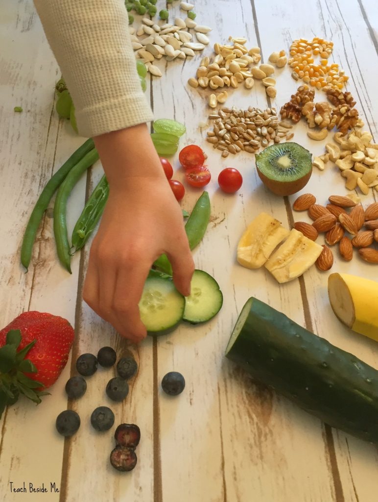 seeds we eat - Seed science and nature activity