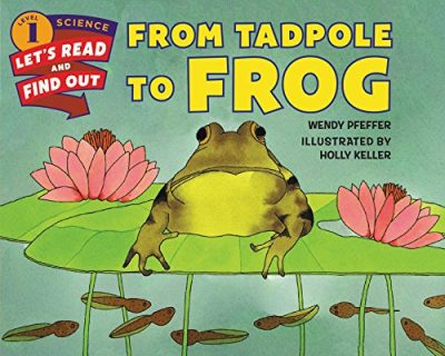 frog life cycle book