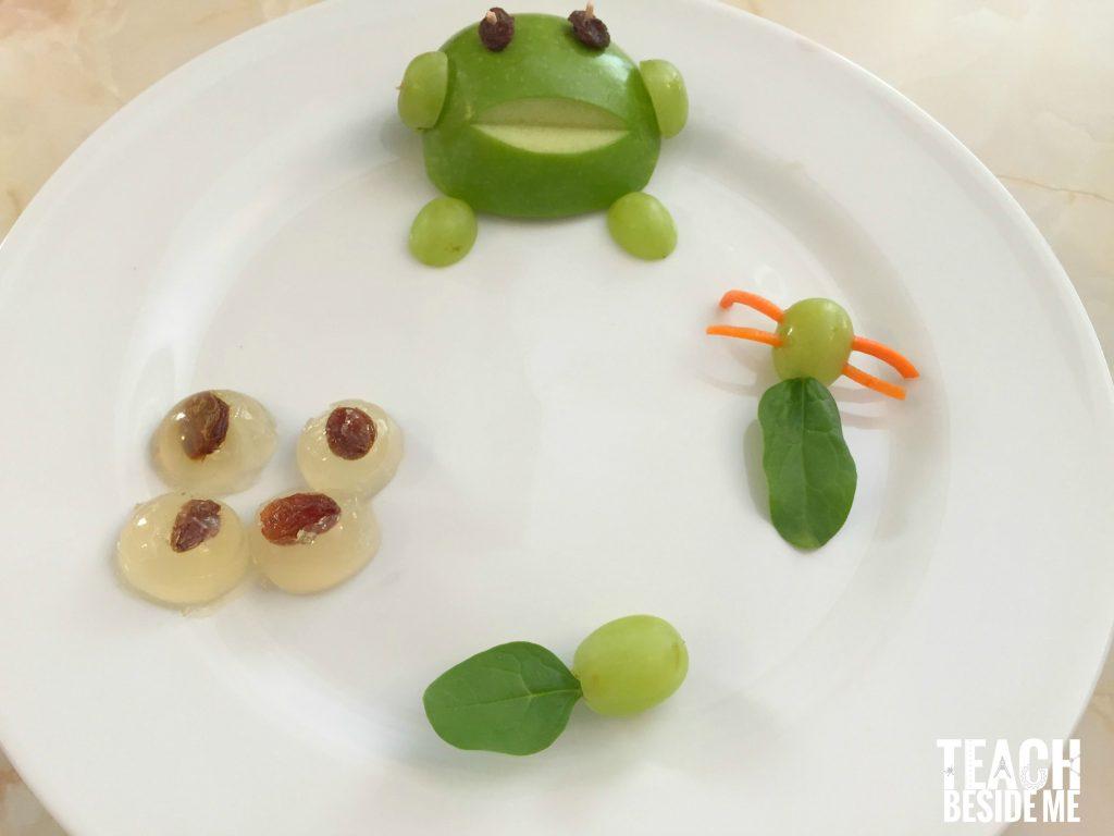 frog snack- life cycle